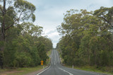 Australian outback road along bush, forest with yellow road signs - 231785671