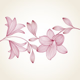 Spring background with lily flowers.
