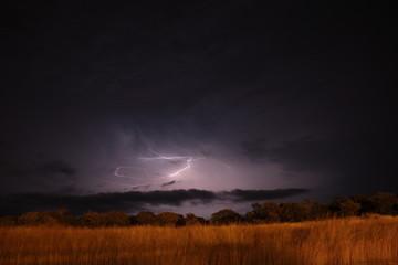 thunderstorm in the savannah