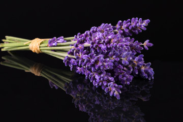 Bouguet of violet lavendula flowers isolated on black background, close up