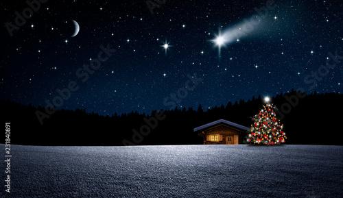 Choinka w nocy zimowym lesie