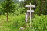 Zwei Wegweiser im Wald zeigen Richtung an - 231845093