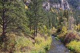 A river in a fall landscape in Spearfish Canyon, Black Hills, South Dakota - 231850457