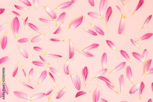 Foto Murales petals on pink