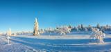 Snowy panorama, frozen trees in winter in Saariselka, Lapland, Finland - 231862454