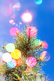 Spruce tree branch with colorful blurred lights - 231862854