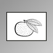 Tangerine poster in black and white for interior decor - 231867482
