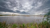 Sliding camera towards flooded rice field in Albufera - 231879434