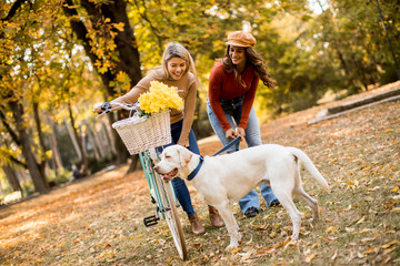 Two female friends walking in the autumn park with dog and bicycle © Boggy