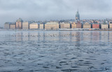 Frozen bay and Stockholm gamla stan on a foggy winter morning. - 231936475