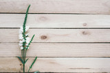 wild flower on wooden boards - 231938493