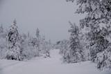Frozen winter road in Finland - 231973677
