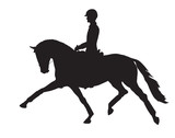 A silhouette of a dressage rider on a horse. - 231978023