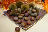 Fresh chestnuts in the shell in winter with maple foliage - 231999661
