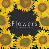 Sunflowers frame with leaf on black background. Vector set of blooming floral for holiday invitations, greeting card and fashion design.