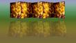 Parant aus Weinblaettern-Stillleben-Paravant aus Weinblättern gespiegelt