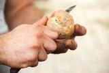 Manual peel of raw potato, cook hands - 232061869