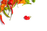 Hot peppers on white background top view