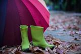 colorful umbrella in rainy day - 232075413