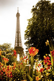 paris rétro tour eiffel après guerre fleur france capital tourisme cliché - 232095454