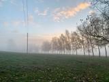 Masten im Sonnenaufgang / Strommasten - 232095877