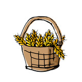 Wheat ears in wicker basket. Doodle style drawing with offset effect. - 232126651