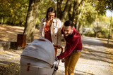 Happy young parents walking in the park and driving a baby in baby carriage - 232133277