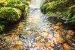 Leinwanddruck Bild - flow water stream over the rock in tropical garden