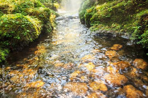 Leinwanddruck Bild flow water stream over the rock in tropical garden