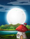 Mushroom house at night - 232146239