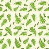Fern leaf seamless pattern - 232147284