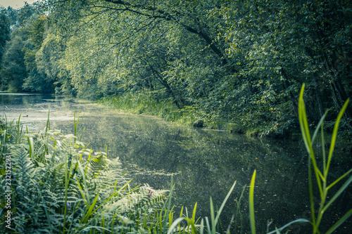 Piękny lato przy Monklands kanałem w Szkocja