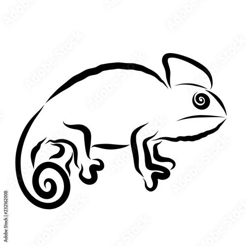 Kameleon z okiem i ogonem w kształcie spiralnego, czarnego obramowania