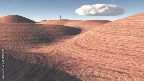 Man stands in rock desert - 232182680