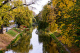 The city canal across a huge willow trees in autumn. Hungary, Gyula - 232206802