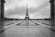 Eiffel Tower, famous landmark, Paris, France.