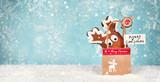 Weihnachtsplätzchen - Weihnachtsgeschenke - 232245276
