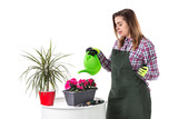 woman professional gardener or florist in apron holding flowers in a pot and gardening tools  isolated on white background. Copy space - 232270445