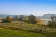 Leinwanddruck Bild - Naturbelassene Wiesen werden nur einmal im Jahr gemäht, Nationalpark Waren Müritz