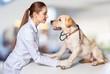 Woman veterinarian.