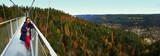 asiatische Touristin erfreut sich am Ausblick von der Hängebrücke auf den bunten Schwarzwald