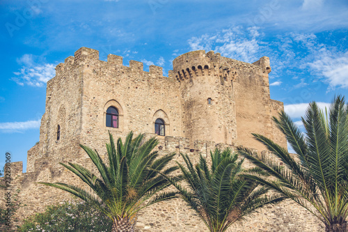 The view of old stone castle with palms an blu sky