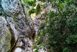 Rocce lungo il sentiero 38 nel parco del Monte Cucco - 232304485
