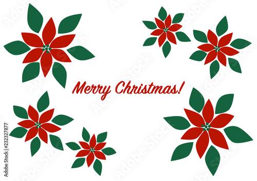 merry christmas クリスマス ポインセチア イラスト buy photos ap