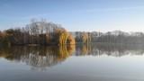 Pond with birds on an autumn day. - 232362636