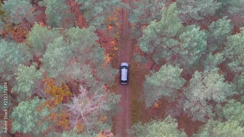 Wall mural Aerial view of SUV car driving in the forest