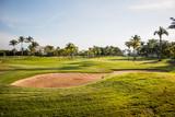 Campo de golf amplio, con pasto verde, cielo azul, algunas palmeras y trampas de arena.