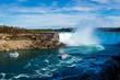 Niagara Falls - Nature - 232392091