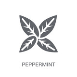 Peppermint icon. Trendy Peppermint logo concept on white background from Nature collection - 232396477