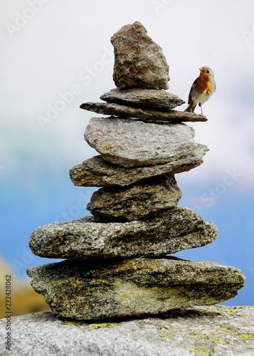 stone  - 232428062